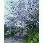 20040403_1057_0000.jpg